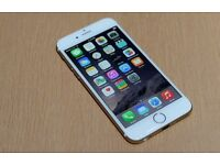 iPhone 6 64GB Gold Unlocked - Mint Condition £300