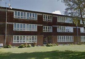 Beautiful modern 2 bedroom flat to rent in Finchfield Wolverhampton!