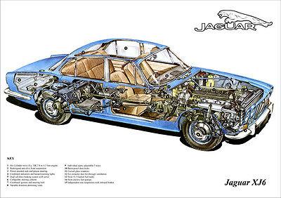 JAGUAR XJ6 CUTAWAY IMAGE A3 SIZE POSTER PRINT