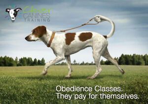 Group Class Registration - Clever Canines Training!