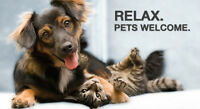 Need a pet friendly condo? Click here