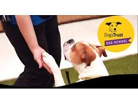 Dogs Trust Dog School Training Classes