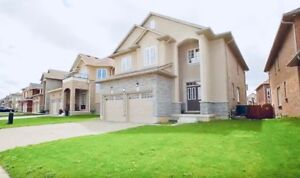 Gorgeous NEW single family home for rent in Ancaster!