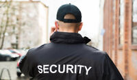 SECURITY PROFESSIONAL