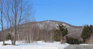 Terrain à vendre Bromont - 25 et 37 acres