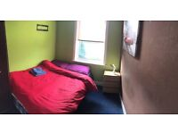 Single room with very quiet people. Pet free. Clean house