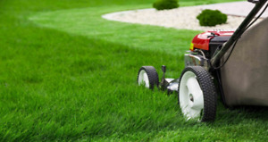 LAWN SERVICES GREAT RATES.