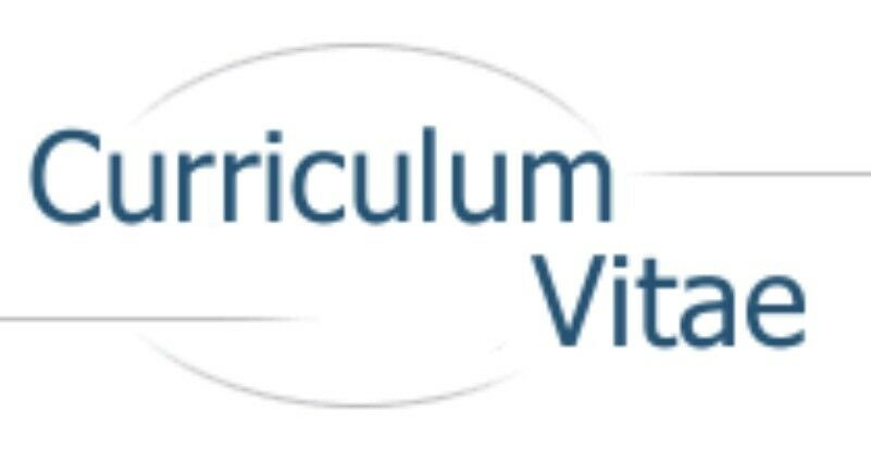 Curriculum Vitae CV Cover Letter Proofreading