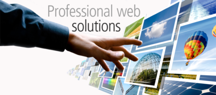 Professional Web Design Services at very reasonable prices.