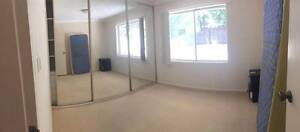 Double room for rent in Dee Why Dee Why Manly Area Preview