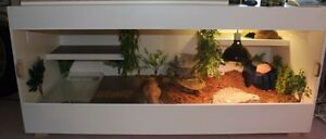 Custom Built Reptile Enclosures