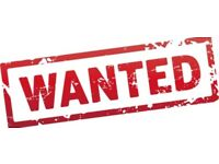 Wanted! 1 bedroom flat with courtyard/garden for mature student and medium sized 7 year old dog