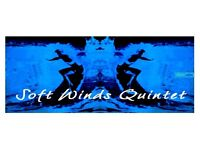 Jazz Afternoon with Soft Winds Quintet