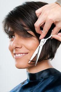 Cours coiffure-pose ongle-cils-rallonge de cheveux 850-4943 Saint-Hyacinthe Québec image 6