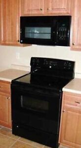 Flat top stove with microwave range and dishwasher