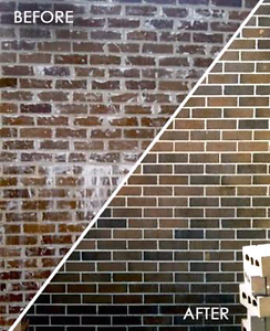 Professional brick cleaning Randwick Eastern Suburbs Preview