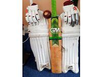 Cricket Bat, Ball, Gloves and Pads