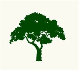 Friendly and Reliable Gardener and Tree Surgeon Brian McWilliams Garden Services