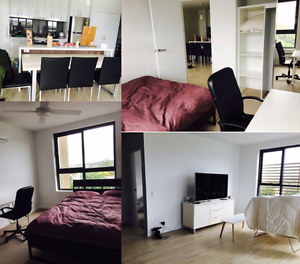 Female Wanted for Second Bedroom (New APT - Upper Mount Gravatt) Upper Mount Gravatt Brisbane South East Preview