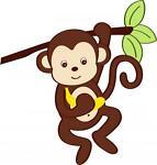 Cheapy Monkeys