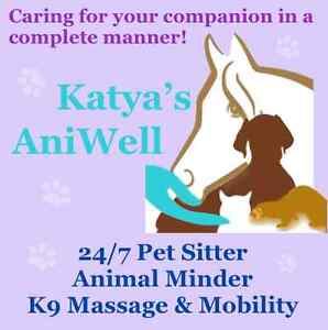 24/7 PET SITTER, K9 MASSAGE & DOG FITNESS Mount Lawley Stirling Area Preview
