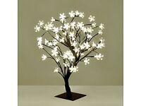 Set of 2 Decorative Bonsai Style Tree Table Lamp Light