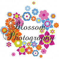 Photography for all sesasons!