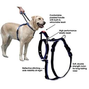 Bamboo Quick Control Harness with Built-In Leash Used For Lab