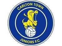Carlton town juniors.U9 players required.