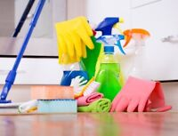 House Cleaning/Organizing Services