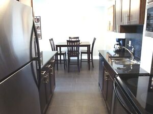 Premiere Suites - Fully Furnished, Luxury 2 BR Apt