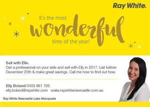 Property Owner Promotion Belmont Lake Macquarie Area Preview