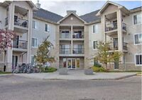 Evergreen-2Bed+2full Bath-Utilities incl.Available immediately