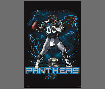 Rare CAROLINA PANTHERS NFL QB-Panther-Style Theme Art Action Wall POSTER (Nfl Theme)