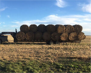 30 hay bales for sale