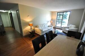 2 bedrooms for the price of 1! PLUS ONE MONTH FREE! Kitchener / Waterloo Kitchener Area image 5