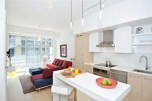 Fully Furnished King West Condo W DNA 3