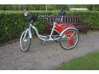 Adult Electric Tricycle 36v - New