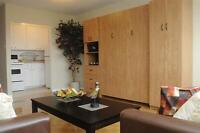 Sandy Hill! Ultra Convenient-Scenic-Newly Renovated Bachelor!