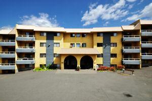 Dufferin Terrace Apartments - 1 Bedroom Apartment for Rent...