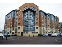 Professional to Share Modern Lovely Southside Double Bedroom flat