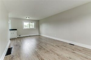 Newly renovated 1br apartment in Whitby