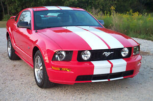 WANT TO BUY A MUSTANG!