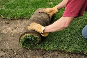 SOD, NEW GRASS SPECIAL STARTING @ $1 PER SQUARE FOOT SOD SALE LAWN CARE NEW LAWN WEED REMOVAL FREE ESTIMATES