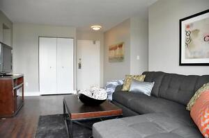 Newly Renovated Condo Style Apartment!