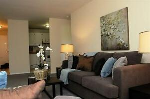 Live the Downtown Life in a Spacious-Bright Suite! London Ontario image 1