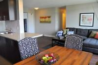 Downtown! Convenient-Newly Renovated Jr 1BR-Open Concept!