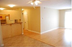 Nicest Apt for the Price! 381-3333 **WASHER & DRYER Incl.**