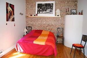 MAJESTIC apartment 4 and 1 / 2 in the heart of Montreal!!!!!