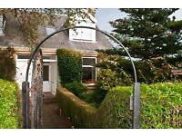 Gorgeous homely 3 bed end terrace in great quiet but central location available for short term let